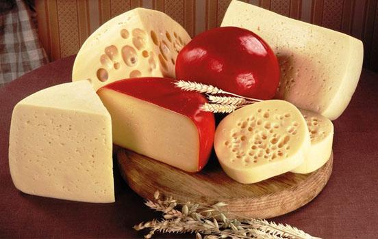 Кабмин намерен ограничить импорт сыров и молочной продукции из Европы