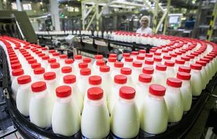 Конкуренция провоцирует рост цен на молочную продукцию