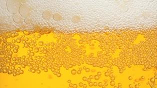В Украине остановилась единственная линия переработки хмеля, производство пива может подорожать