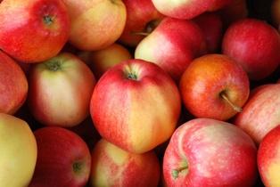 Украина и Польша - лидеры по темпам падения цен на яблоко в октябре