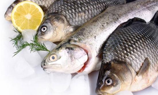 Кто в мире покупает украинские морепродукты