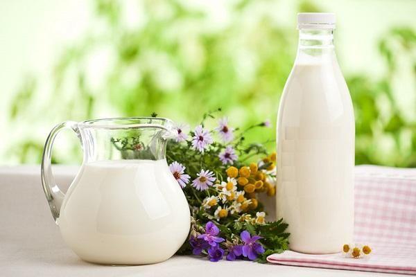 Украина резко увеличила экспорт молока