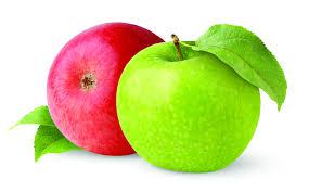 Урожай яблок в 2019г ожидается на уровне 2018-го, есть потери 20-30% земляники в западных областях –