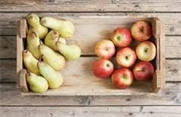 Украина соберет самый низкий урожай яблок за последние шесть лет