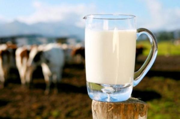 Глава Госпродпотребслужбы пояснил сообщения о радиации в украинском молоке