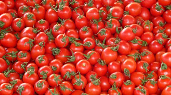 Незважаючи на негоду, ціни на тепличні овочі в Україні продовжують знижуватися